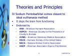 theories and principles3