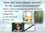 how did land plants survive in the land environment