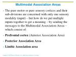 multimodal association areas