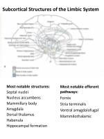 subcortical structures of the limbic system