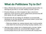 what do politicians try to do