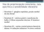 vias de propriocep o consciente tato epicr tico e sensibilidade vibrat ria