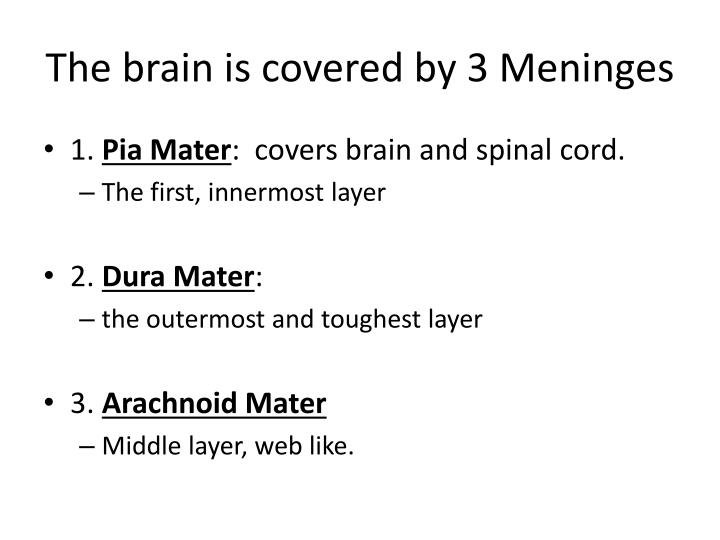 The brain is covered by 3