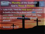 the plurality of the godhead god is three in person