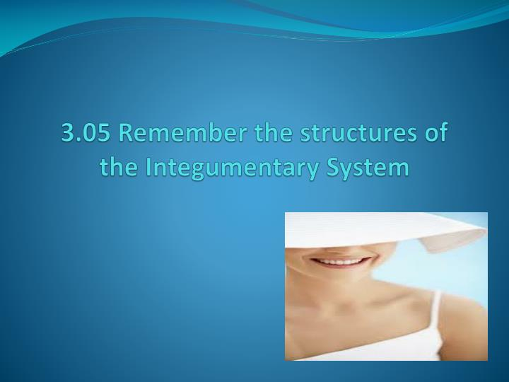 3 05 remember the structures of the integumentary system n.