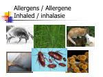 allergens allergene inhaled inhalasie