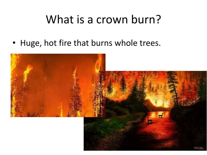 What is a crown burn?