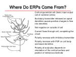 where do erps come from