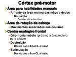 c rtex pr motor
