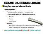 exame da sensibilidade5