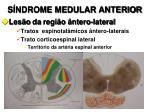 s ndrome medular anterior