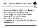 amo reformen er ambiti s