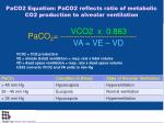 paco2 equation paco2 reflects ratio of metabolic co2 production to alveolar ventilation