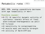 metabolic rate mr
