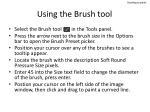 using the brush tool