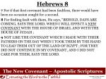 the new covenant apostolic scriptures1
