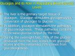 glucagon and its role in regulating blood glucose levels1