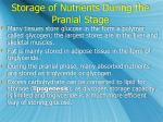 storage of nutrients during the pranial stage