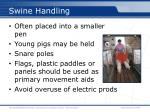 swine handling