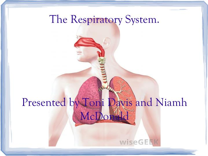 the respiratory system presented by toni davis and niamh mcdonald n.