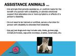 assistance animals1