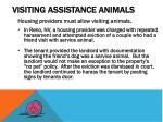 visiting assistance animals