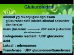 glukuronidasi