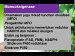 monooksigenase
