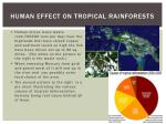 human effect on tropical rainforests