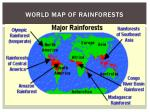 world map of rainforests