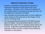 method of cultivation in sudan
