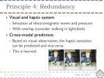 principle 4 redundancy2
