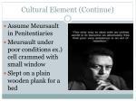 cultural element continue1
