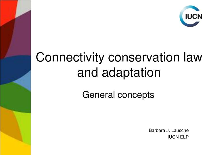 Connectivity conservation law and adaptation