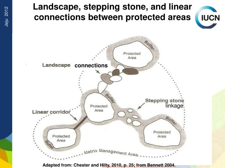 Landscape, stepping stone, and linear connections between protected areas