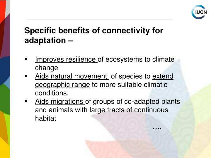 Specific benefits of connectivity for adaptation –