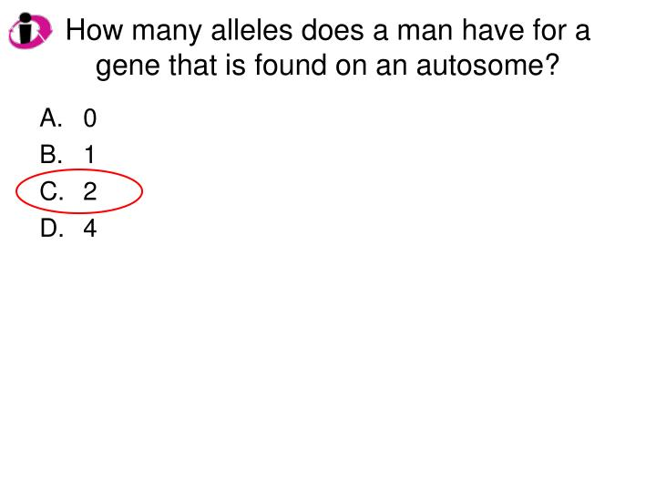 how many alleles does a man have for a gene that is found on an autosome n.