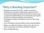 why is bonding important
