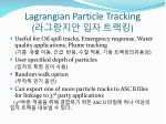 lagrangian particle tracking