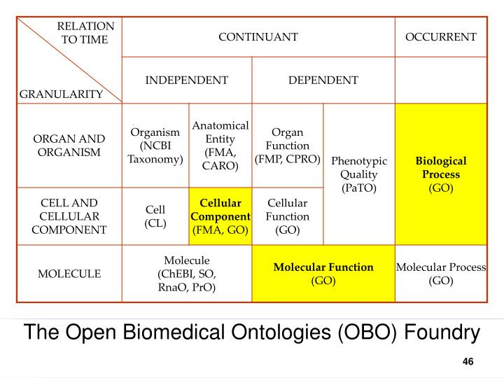 The Open Biomedical Ontologies (OBO) Foundry