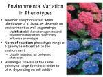 environmental variation in phenotypes