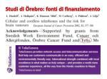 studi di rebro fonti di finanziamento