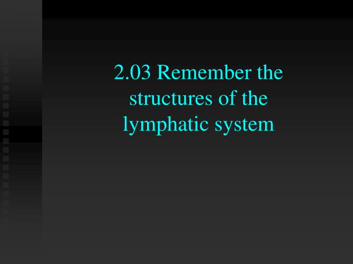 2 03 remember the structures of the lymphatic system n.