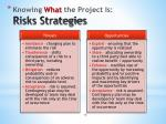 knowing what the project is risks strategies