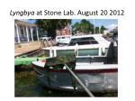 lyngbya at stone lab august 20 20121