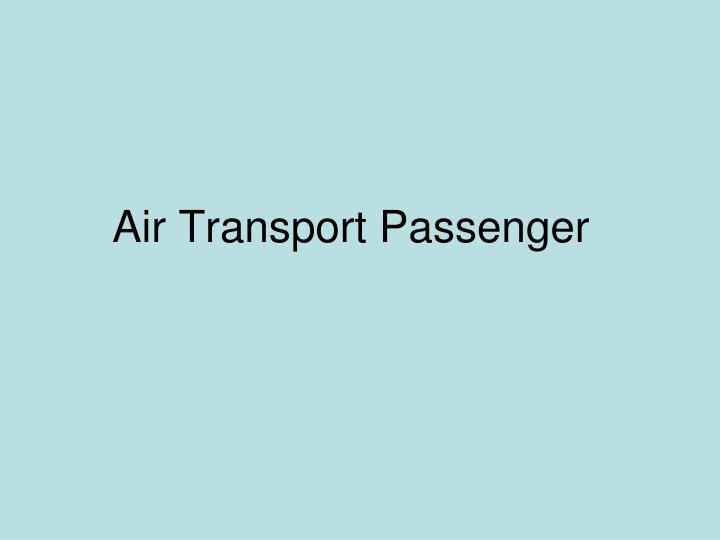 Air Transport Passenger