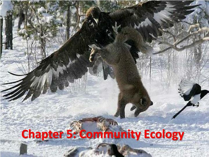chapter 5 community ecology n.