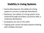 stability in living systems