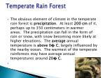 temperate rain forest3