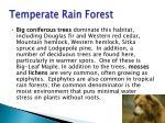 temperate rain forest4